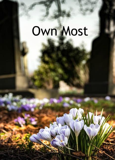 Own Most.jpg